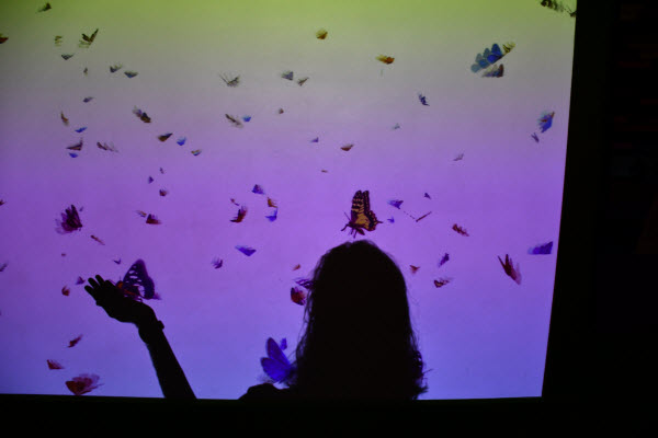 student's shadow on a projector screen that has butterflies flying around and landing on the shadows
