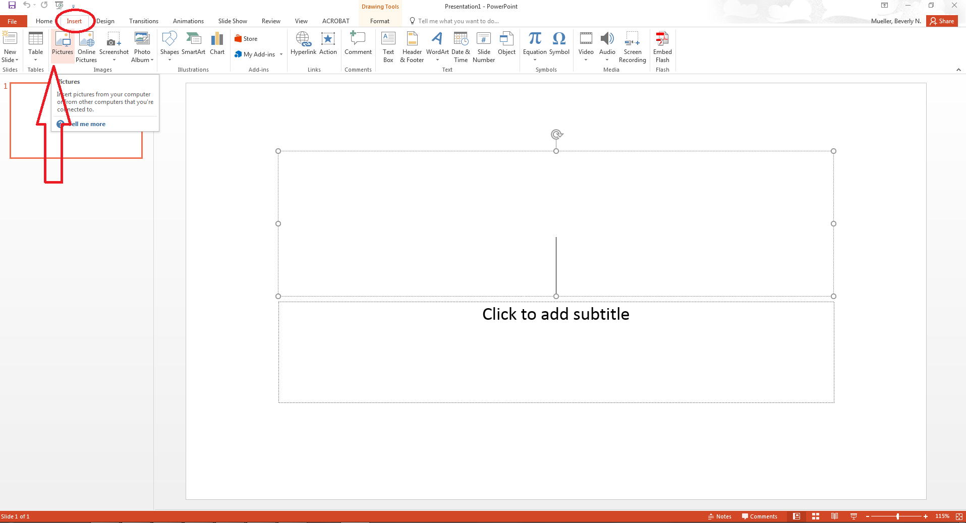 Screen shot of PowerPoint Insert Picture