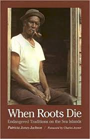 Book cover image of When roots die : endangered traditions on the Sea Islands