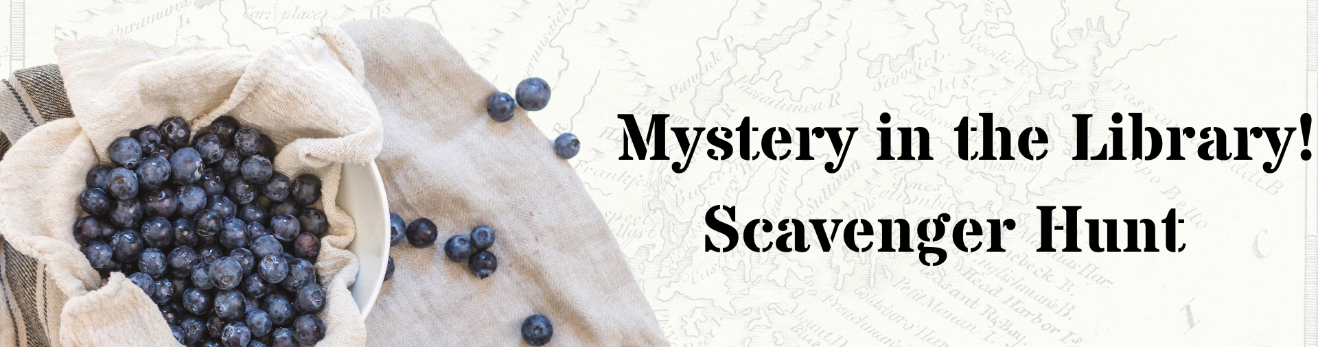 """Banner with a picture of blueberries in a burlap lined bowl with the text """"Mystery in the Library! Scavenger Hunt"""""""