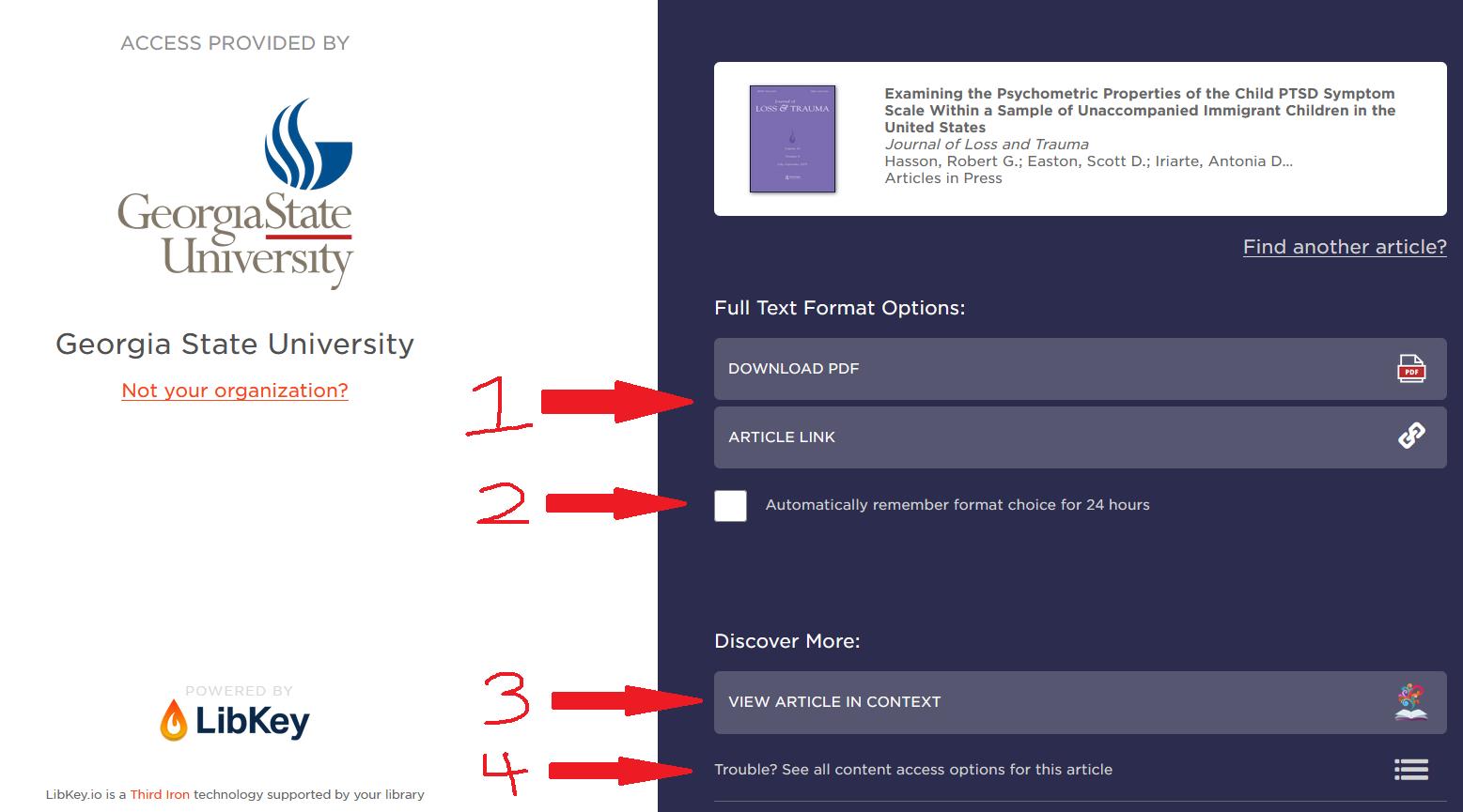 LibKey format chooser page