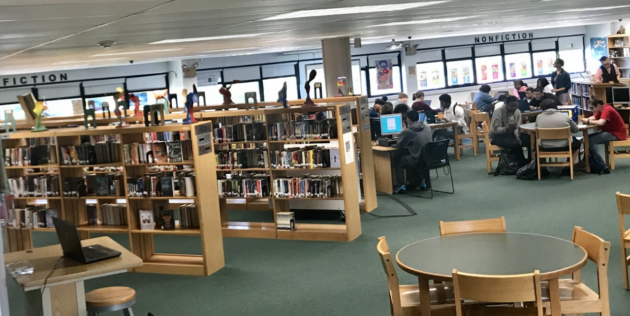 Learning in the Library