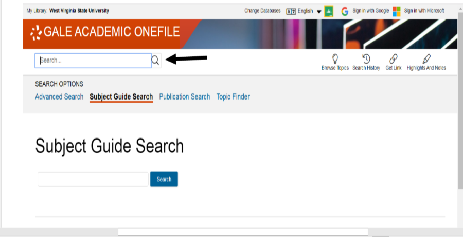 Gale Academic OneFile search boxes