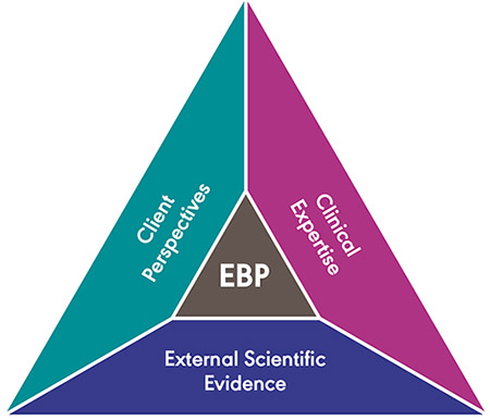 ASHA Triangle: Client Perspective, Clinical Expertise, and External Scientific Evidence