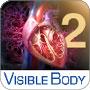 Heart & Circulatory Premium