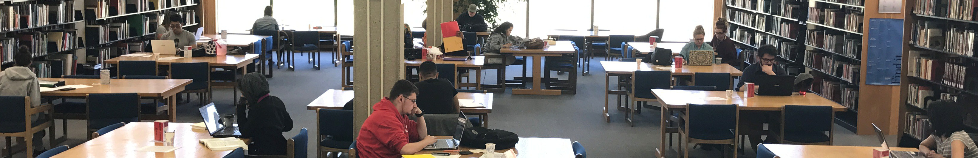 Students Studying in the Library (photo)