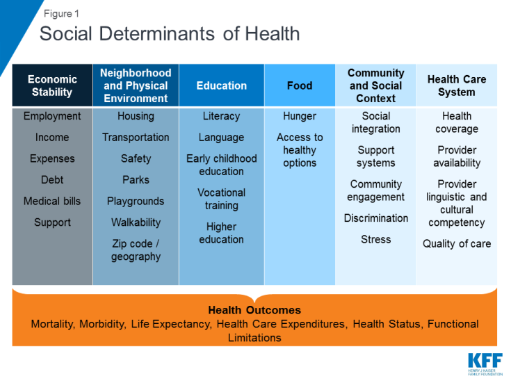 Social Determinants of Health by Social Cluster