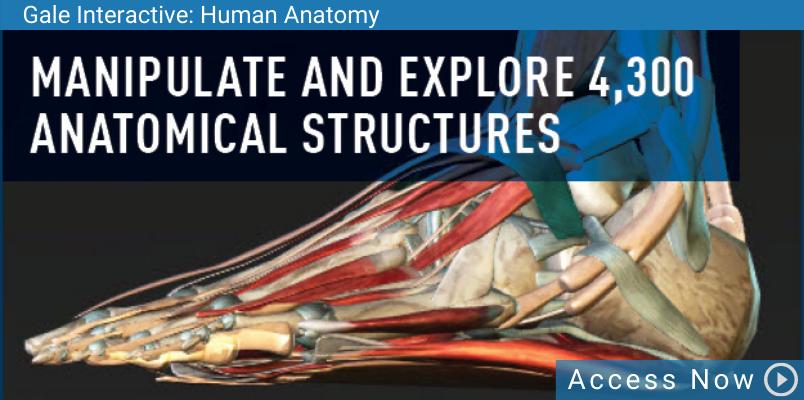 Access Gale Human Anatomy Database