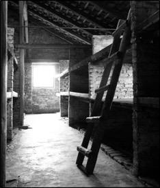 Prisoner barrack at Birkenau (Auschwitz II), postwar. Photo credit: Auschwitz-Birkenau State Museum