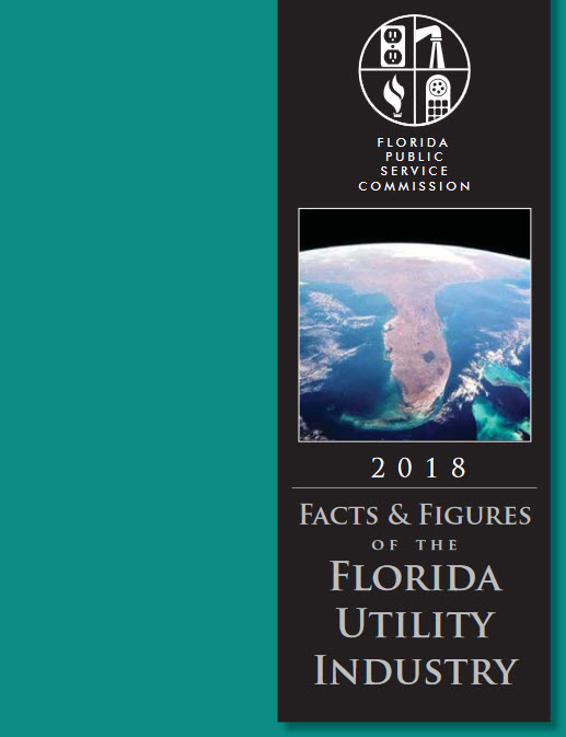 cover of 2018 Facts and Figures of the Florida Utility Industry