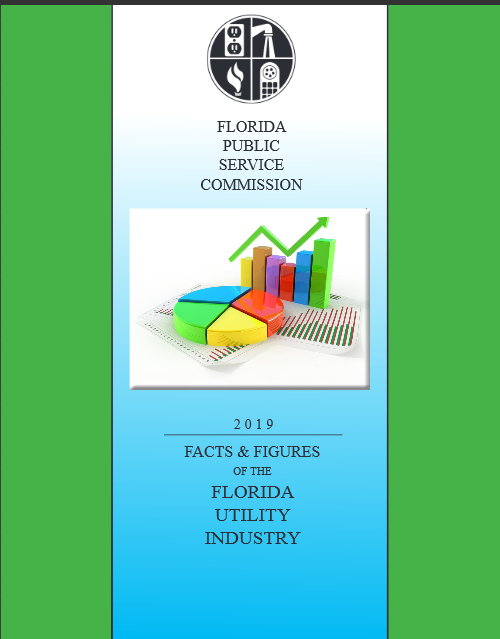 cover of 2019 Facts and Figures of the Florida Utility Industry
