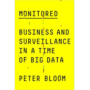 Monitored Business & Surveillance in Time of Big D