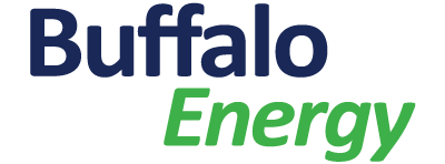 Information Table: Buffalo Energy