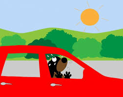 Cartoon of brown dog in red car under full sun. Green trees and grass in background.