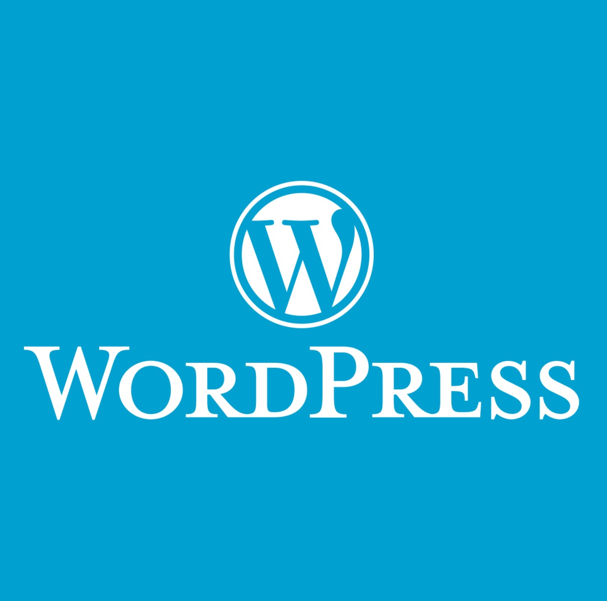 Wordpress for Digital Humanists: Part 3 - Working on Look & Feel of Your Website