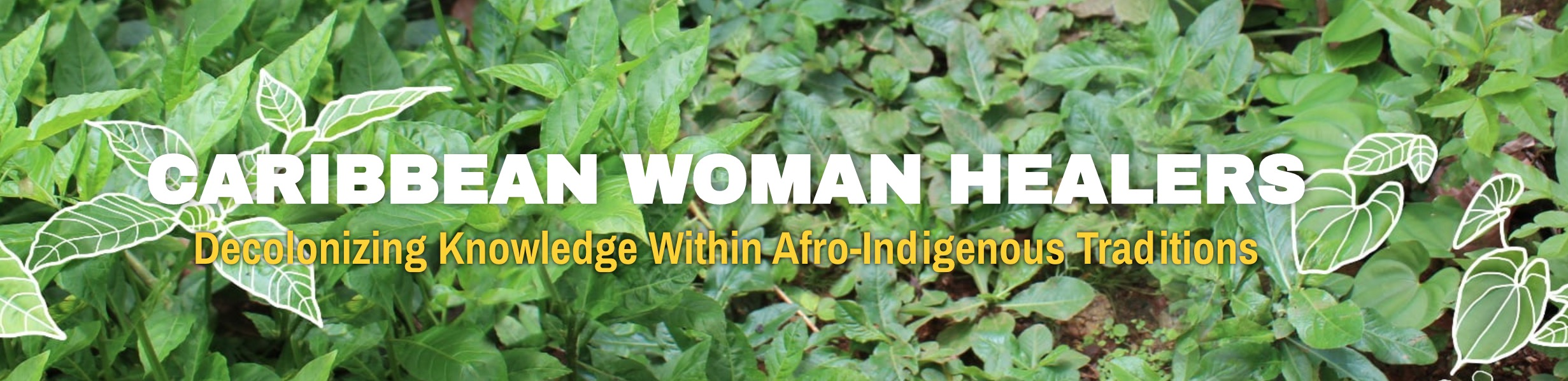 Screenshot of the Caribbean Women Healers website