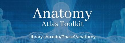 Anatomy Atlas Toolkit