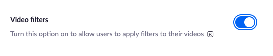 Video filters button