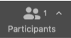 Participants button on Zoom dashboard