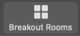 Breakout Rooms button on Zoom dashboard