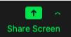 Share Screen button on Zoom dashboard