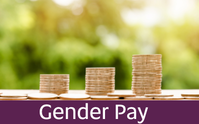 Navigate to Gender Pay page
