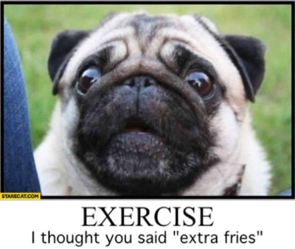Pug lookied worried with the words