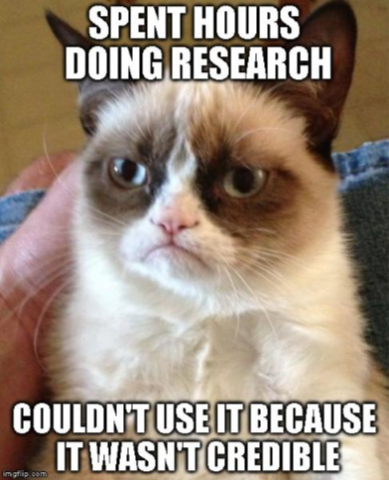 Grumpy cat with the words
