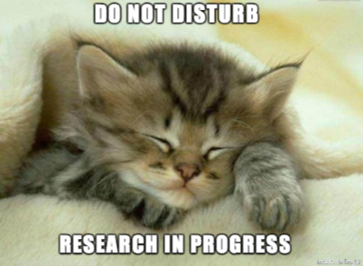 Sleeping kitten with the words