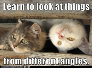 One cat right side up, one upside down looking through fence rails side by side with the words