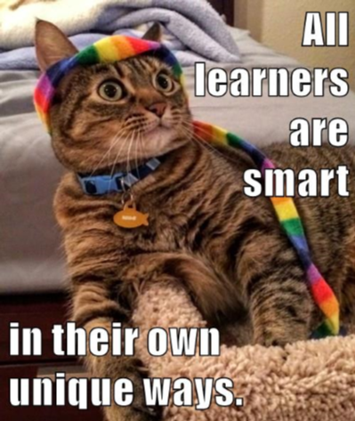 Cat wearing a rainbow scarf around its head and neck and the words