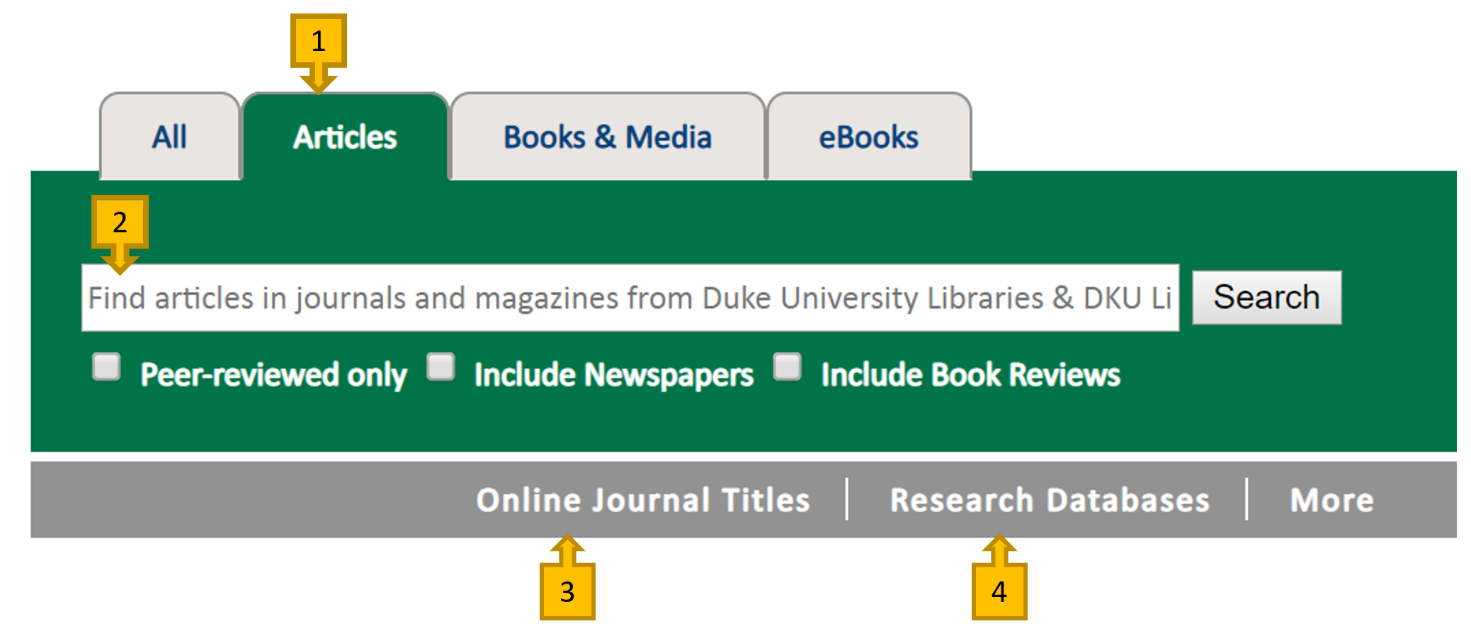 Screenshot of the DKU Library Search Box