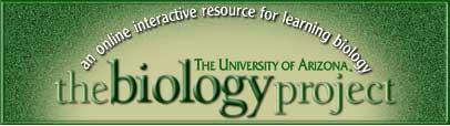 Biology project logo