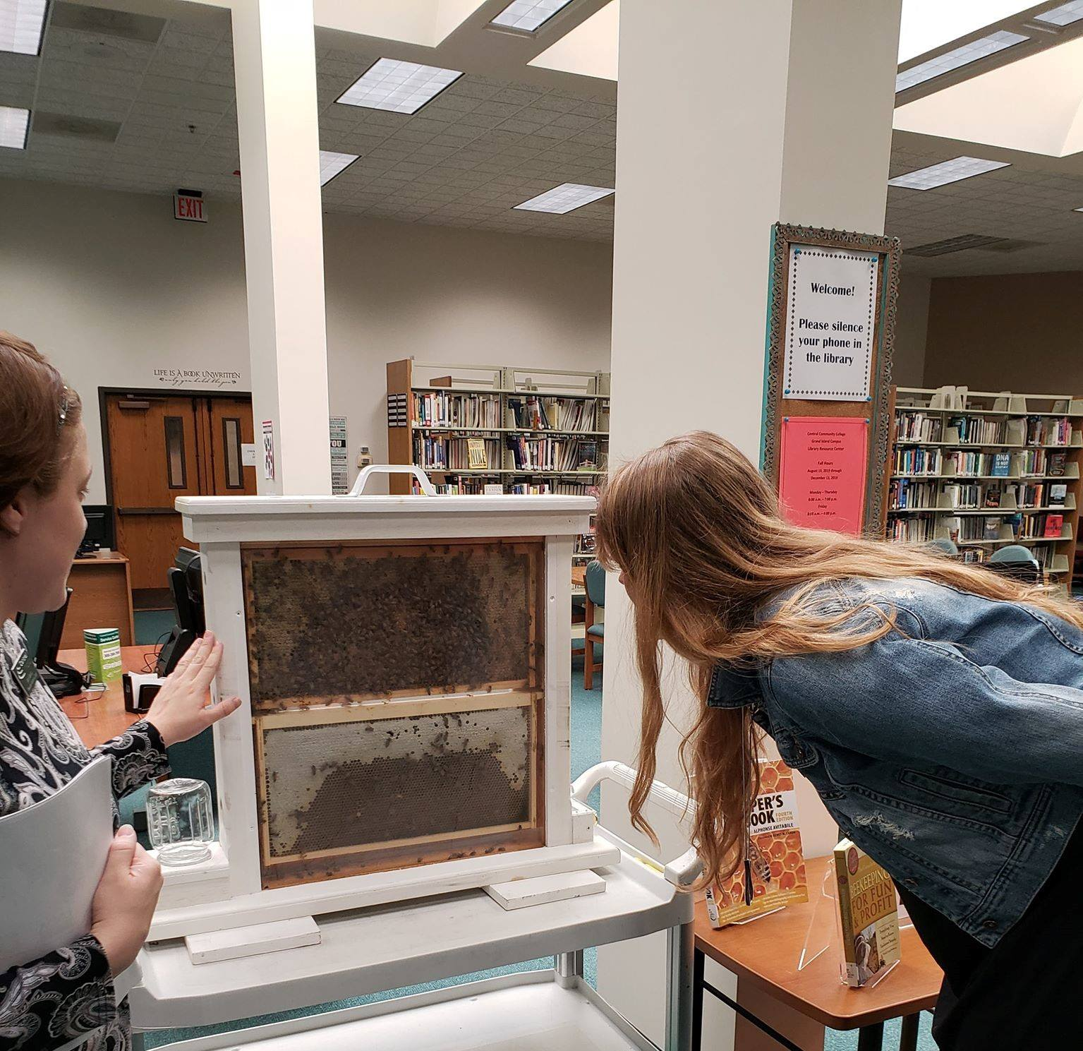 Bees in the Library
