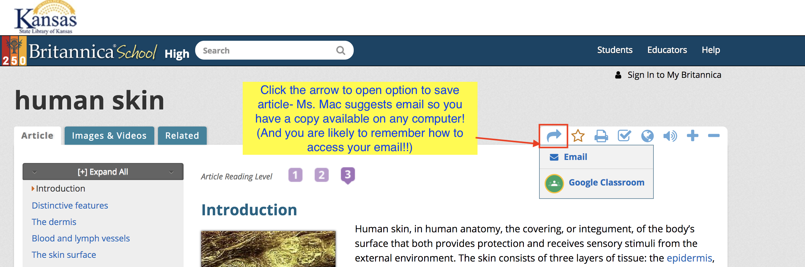 Screenshot highlighting the icon button for emailing articles.