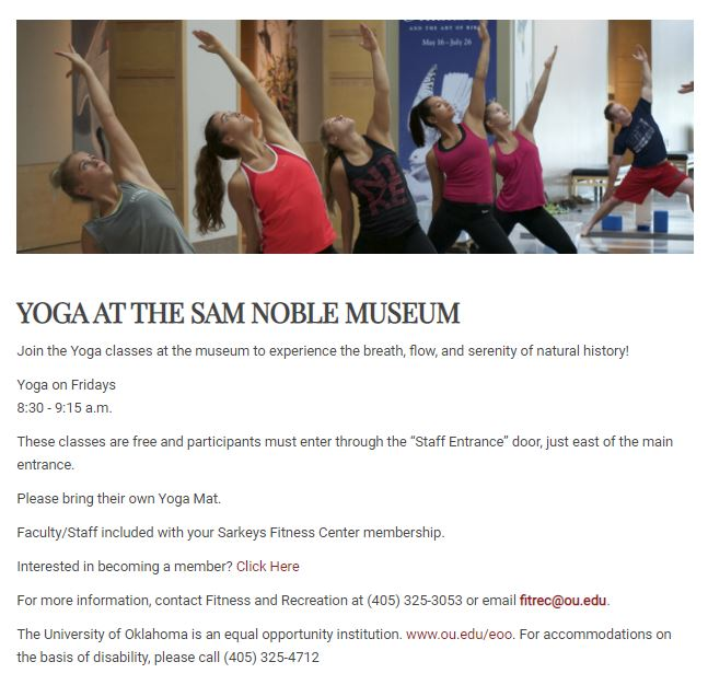 Yoga at the Sam Noble