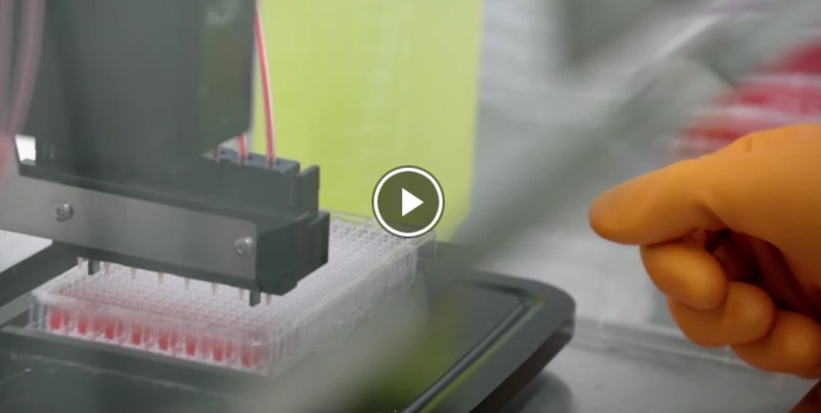 video on decoding the corona 19 virus