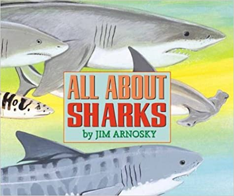 cover image All About Sharks