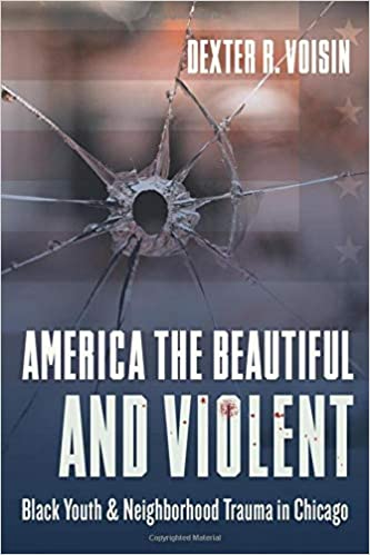 cover image America the Beautiful and Violent