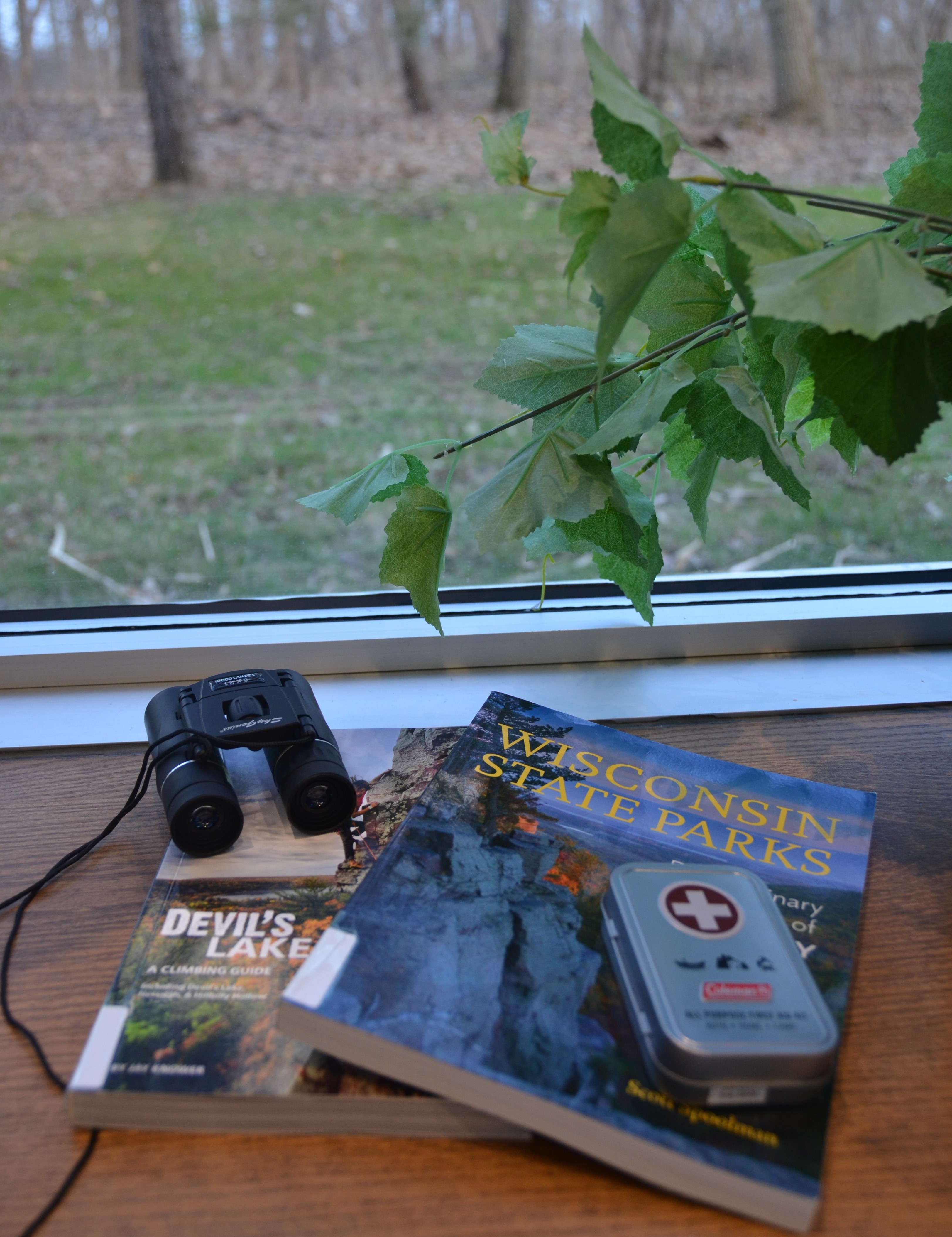 Contents of the Devil's Lake State Park Kit including two books, binoculars, and a first aid kit.