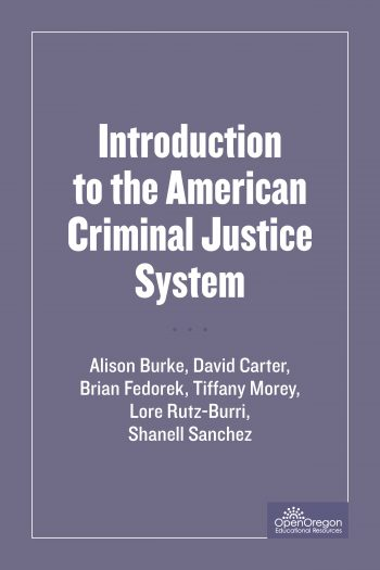 Introduction to the American Criminal Justice System cover