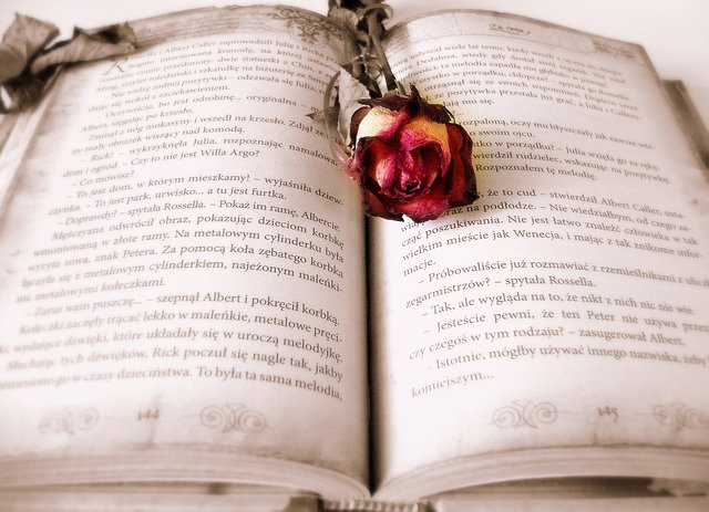 open book with a rose laying on it