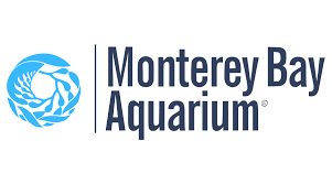 Monterey Bay Aquarium link to live cameras