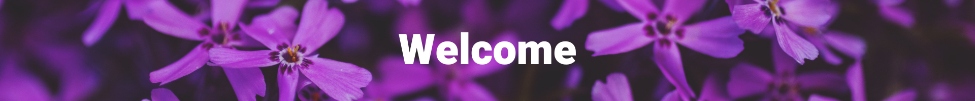 """The text """"Welcome"""" in white on a purple flower background."""