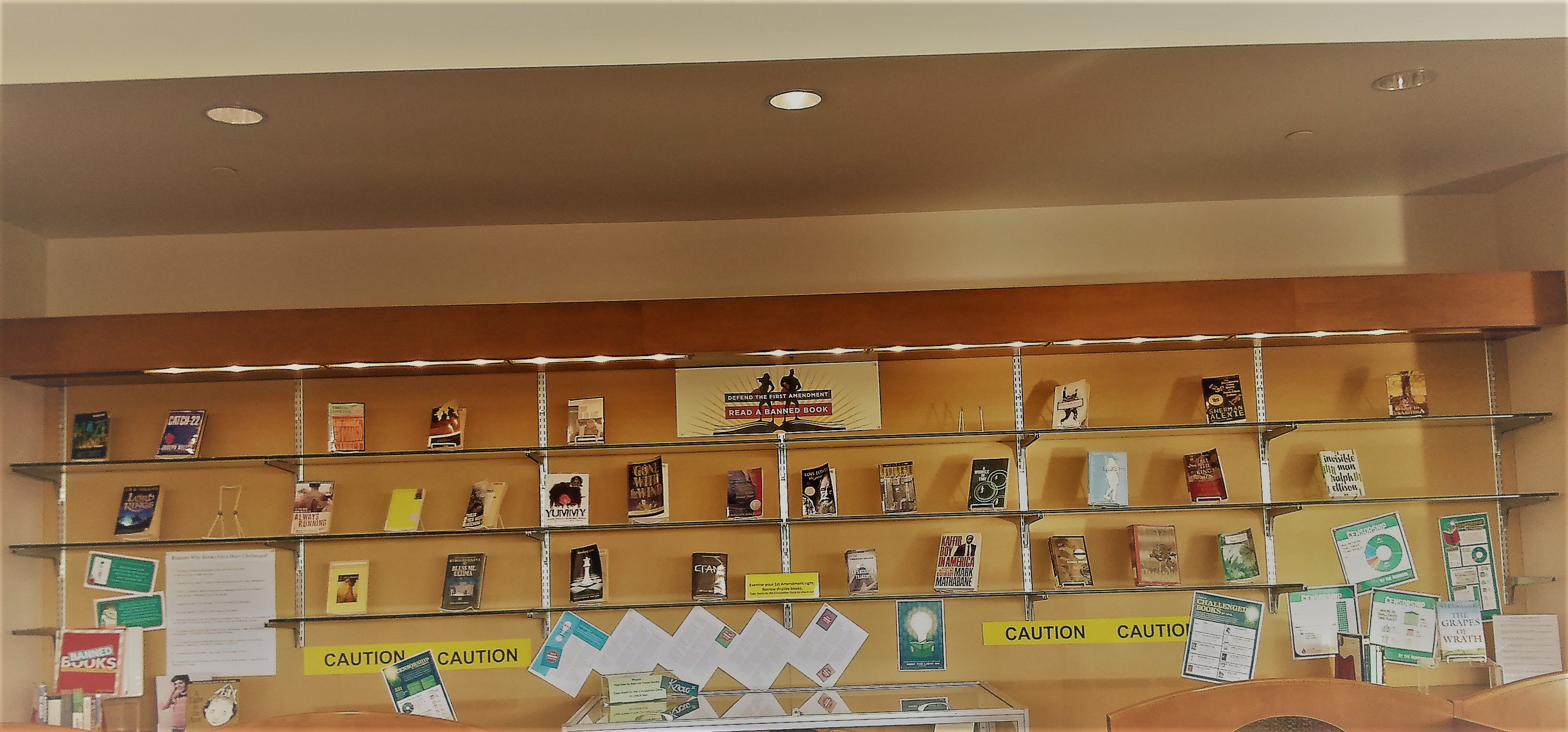 Banned and Challenged Books Display, CCBC Catonsville Library, 2nd floor  **curated by Maureen McLaughlin**