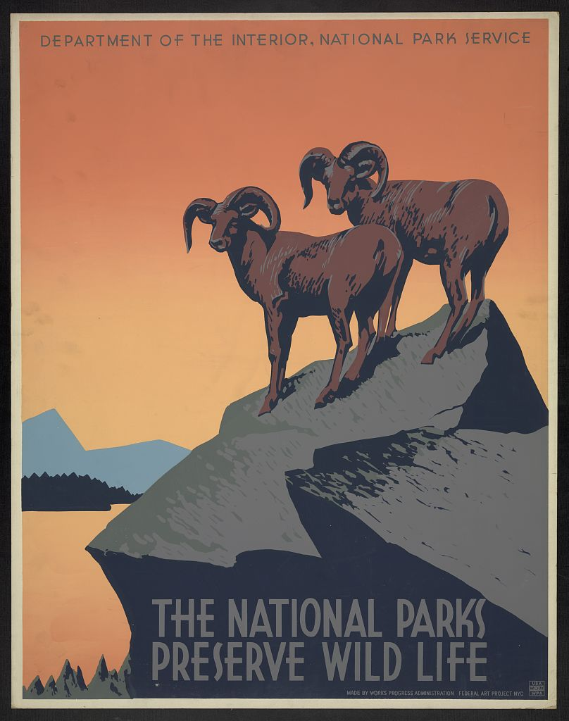 "Image of National Parks poster: two rams summiting a boulder, with text that reads ""THE NATIONAL PARKS PRESERVE WILD LIFE"""
