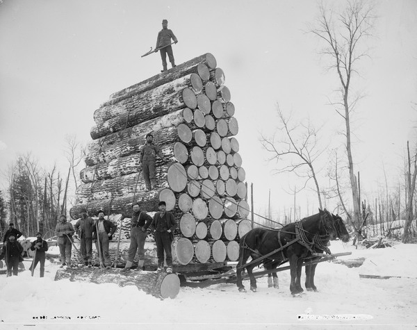 image of Michigan logging