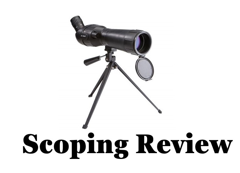 Scoping review icon, with picture of a scope