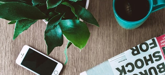 newspaper, plant, and coffee cup