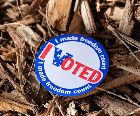image of I voted sticker